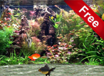 Fantastic Aquarium 3D Screensaver - Aquarium Screensaver for Windows 10