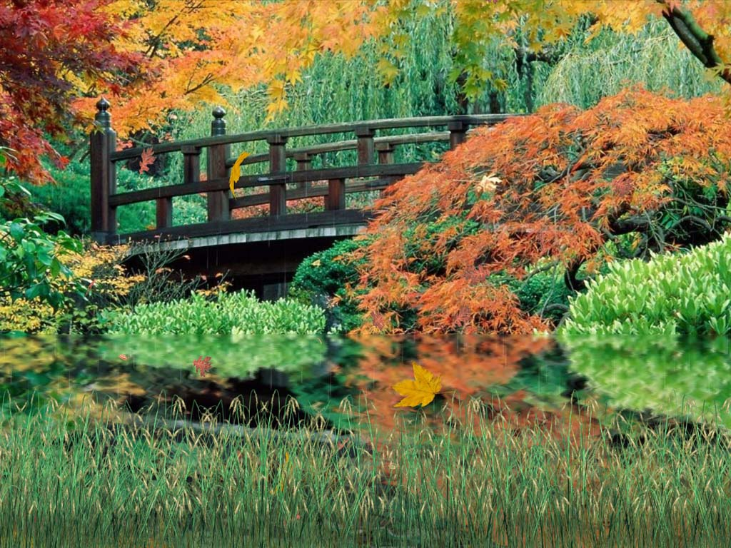 Windows 10 autumn screensaver autumn scenery screensaver - Anime screensaver windows 10 ...